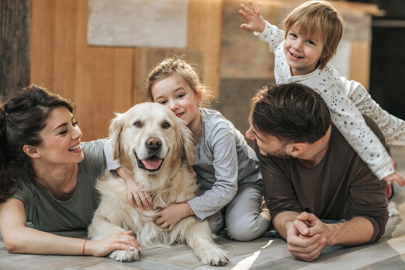 Otthon- és Életmód Biztosítás